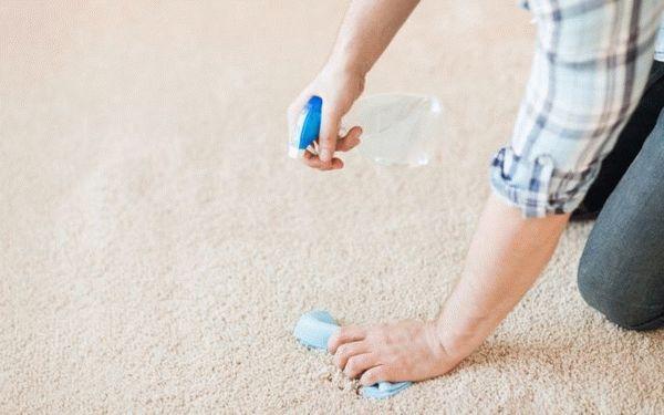 Как убрать шерсть с ковра (собачью, кошачью): как быстро очистить покрытие, как часто должна проводиться чистка?