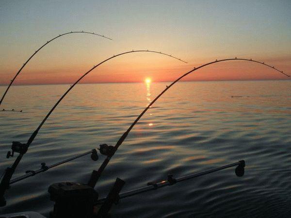 Рыбалка в Дмитровском районе Московской области