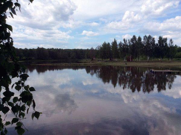 Платная рыбалка в высоково чеховский район
