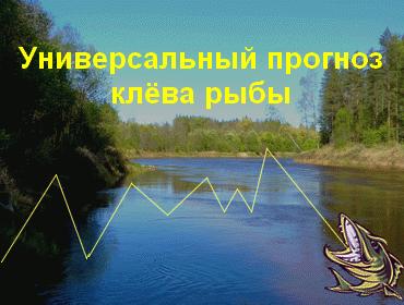 Прогноз клёва рыбы в городе Юрьев-Польский
