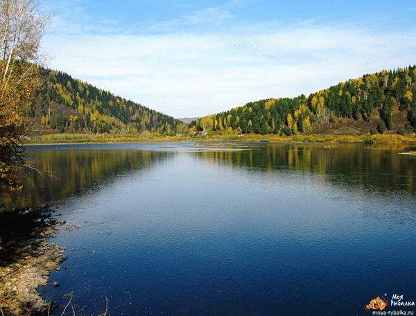 рыбалка в кемеровской области летом