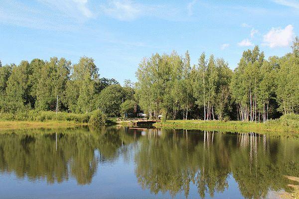 рыбалка в дмитровском районе