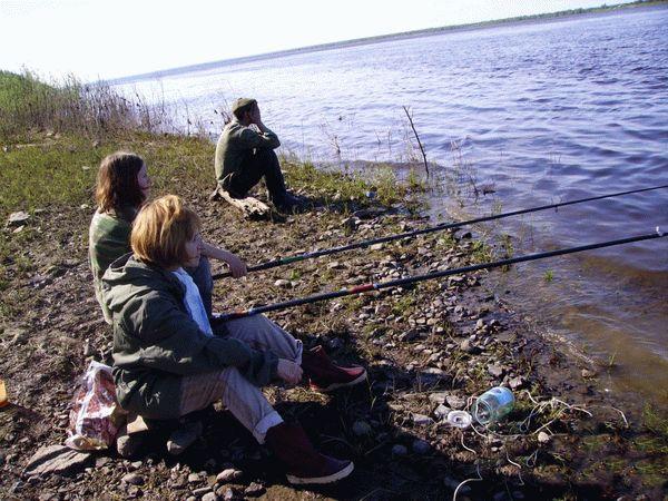 Сидя на берегу озера или пруда, вы наблюдаете за спокойным этих условиях вы сможете расслабиться