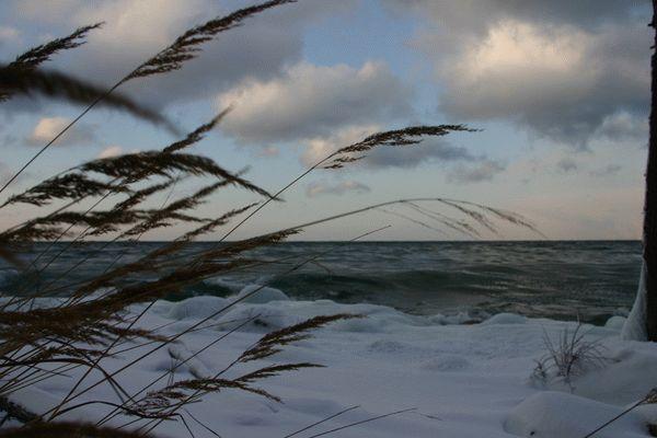 Рыбалка при северном ветре летом || Рыбалка при северном ветре летом